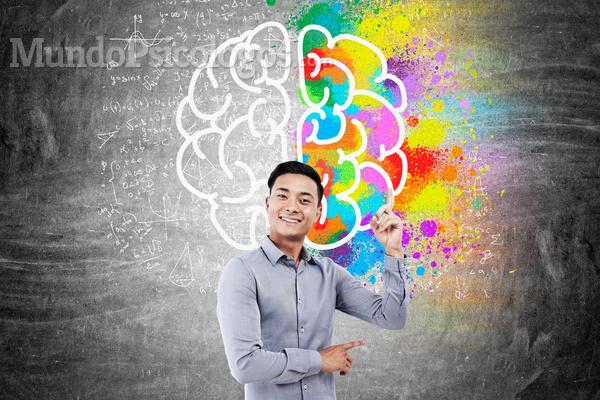 Quais as principais habilidades sociais?