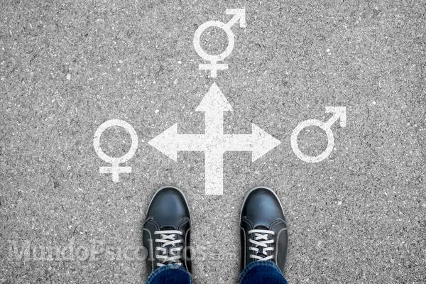 Há diferenças entre transgêneros, travestis e transexuais?