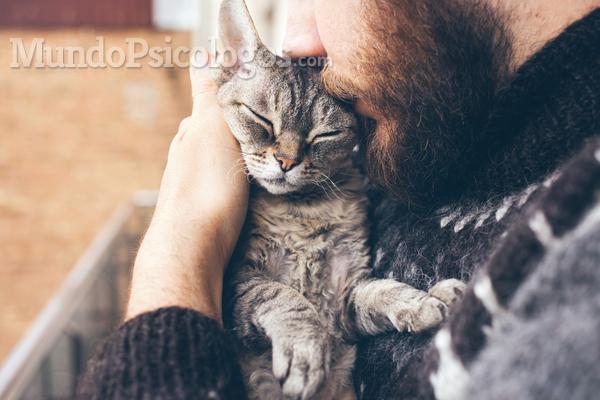 Como superar a perda de um animal de estimação