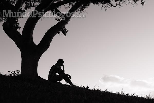 Quais as consequências do bullying na vida adulta?