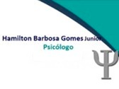 Hamilton Barbosa Gomes Junior